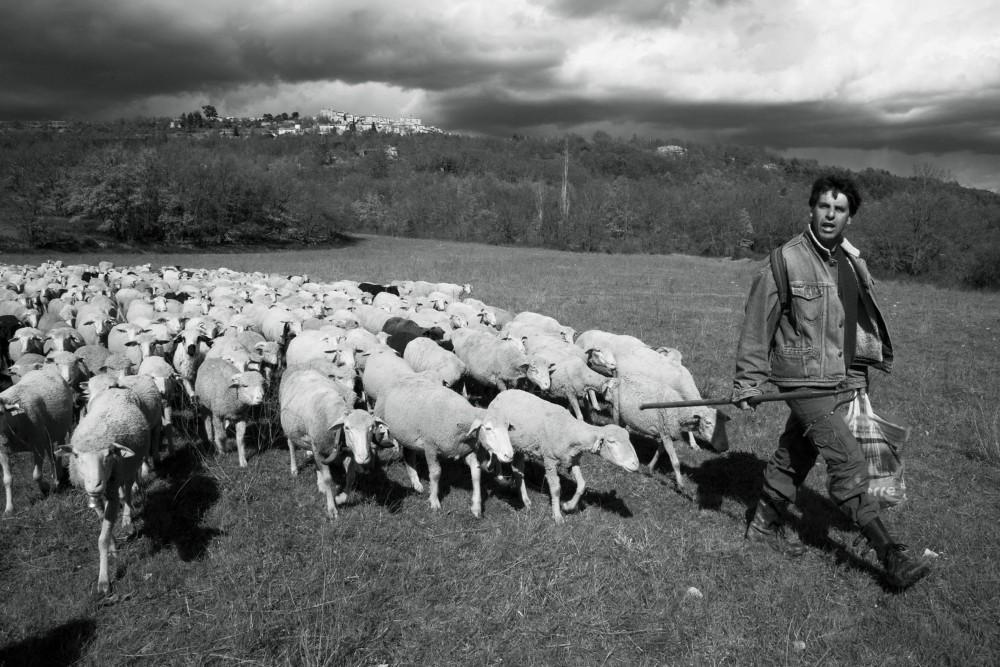 Hervé et son paquet d'agneaux NB (2)